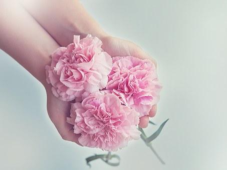 母の日に贈る花の種類は?