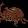 カブトムシの幼虫の育て方は?幼虫のいる場所や元気な幼虫の選び方も
