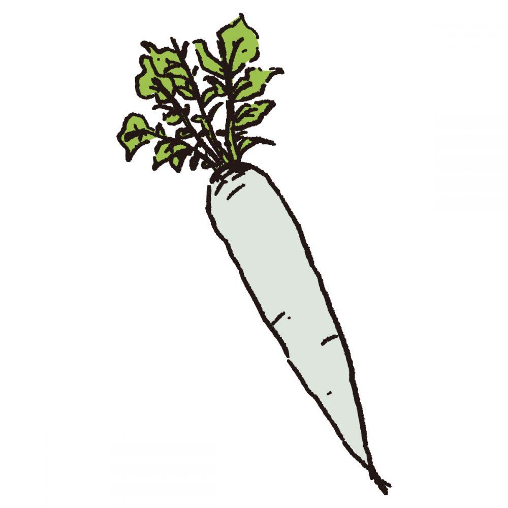 大根の葉 栄養 ふりかけ