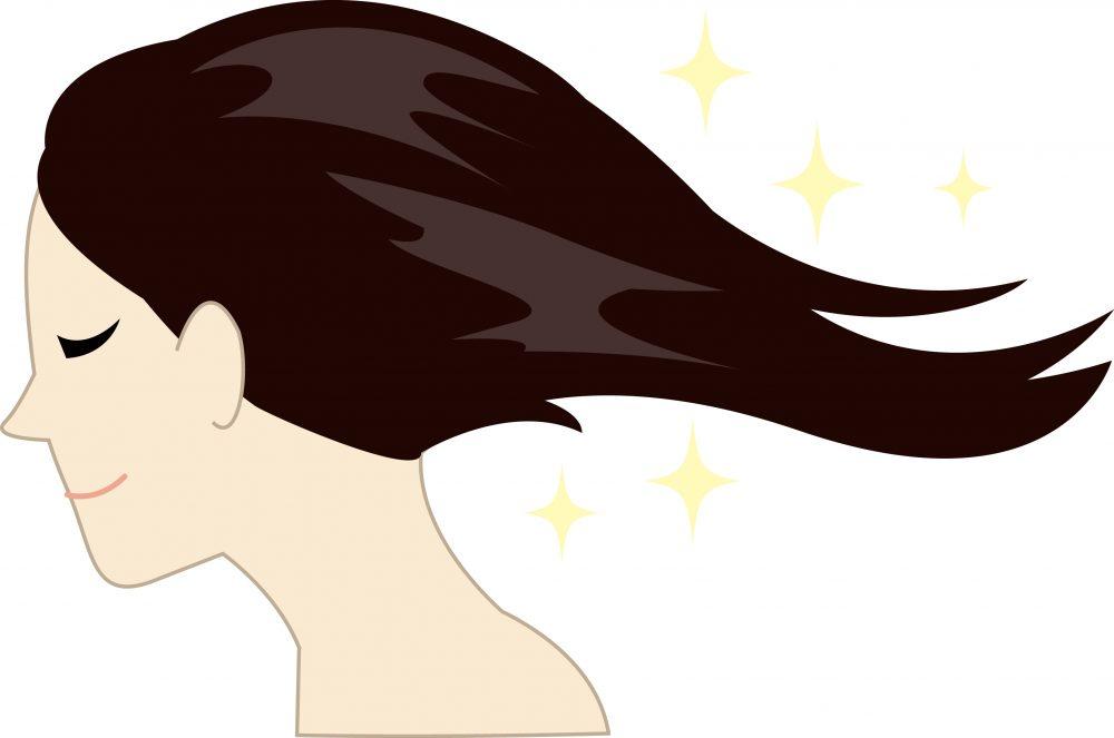 髪の毛によい食べ物